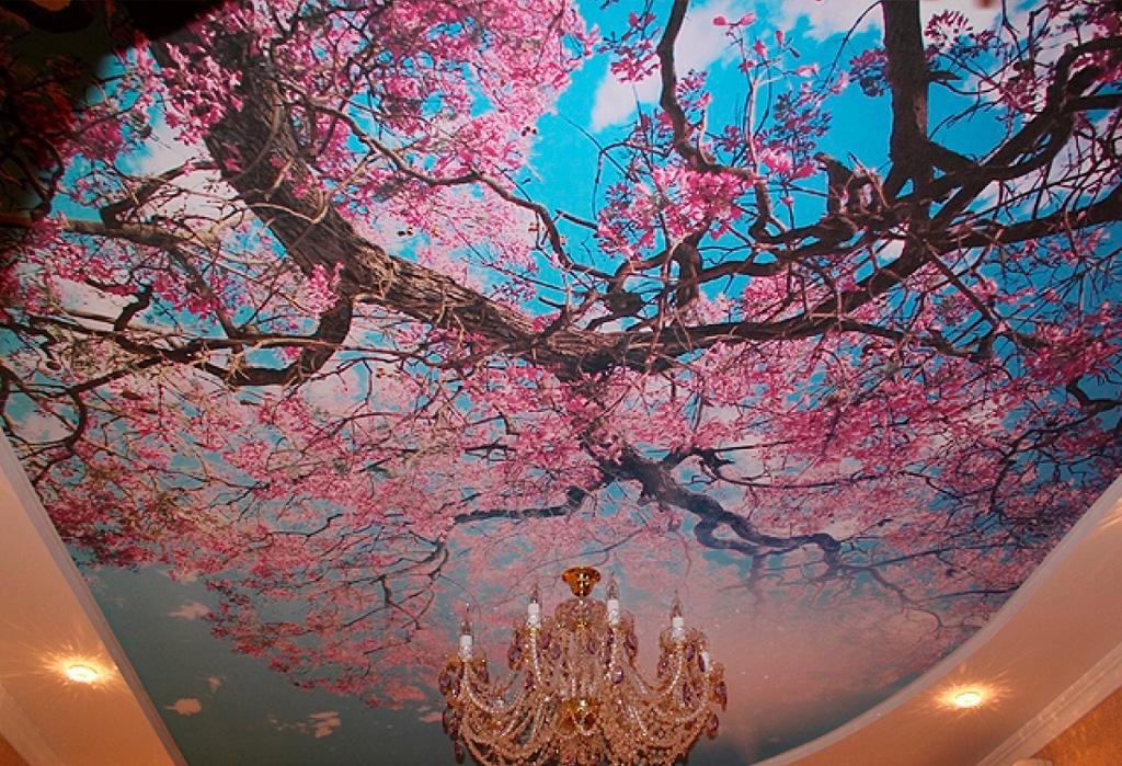 красивые потолки фото_4.jpg