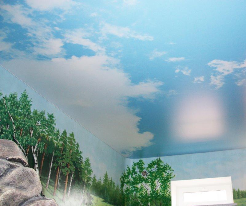 натяжные потолки небо с облаками фото_27.jpg