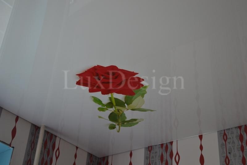 натяжные потолки фотопечать роза.JPG