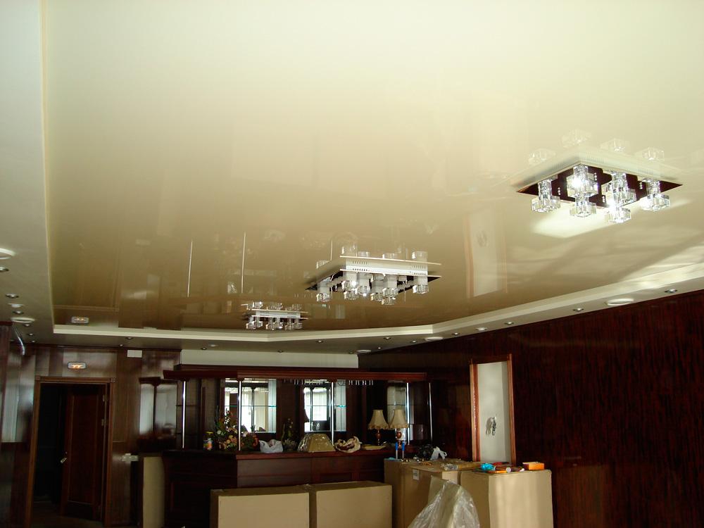 фото натяжных потолков в зале_5.jpg