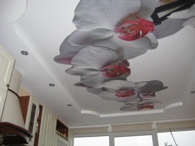 красивые потолки фото_8.jpg