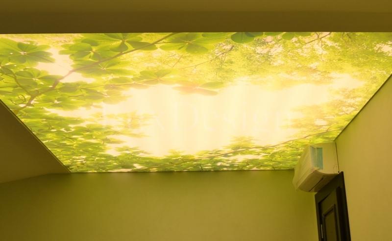 полупрозрачные натяжные потолки фотопечать листья.jpg